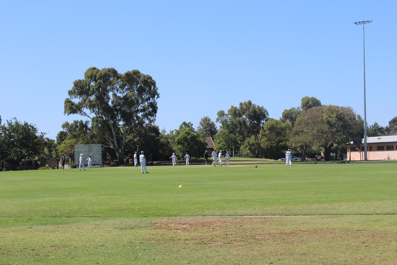 goodwood oval, park, playground, adelaide playgrounds, saturday sport  - Goodwood Oval