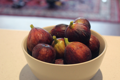 millswood park, fig trees, free figs, fig trees in Adelaide, fruit trees in Adelaide
