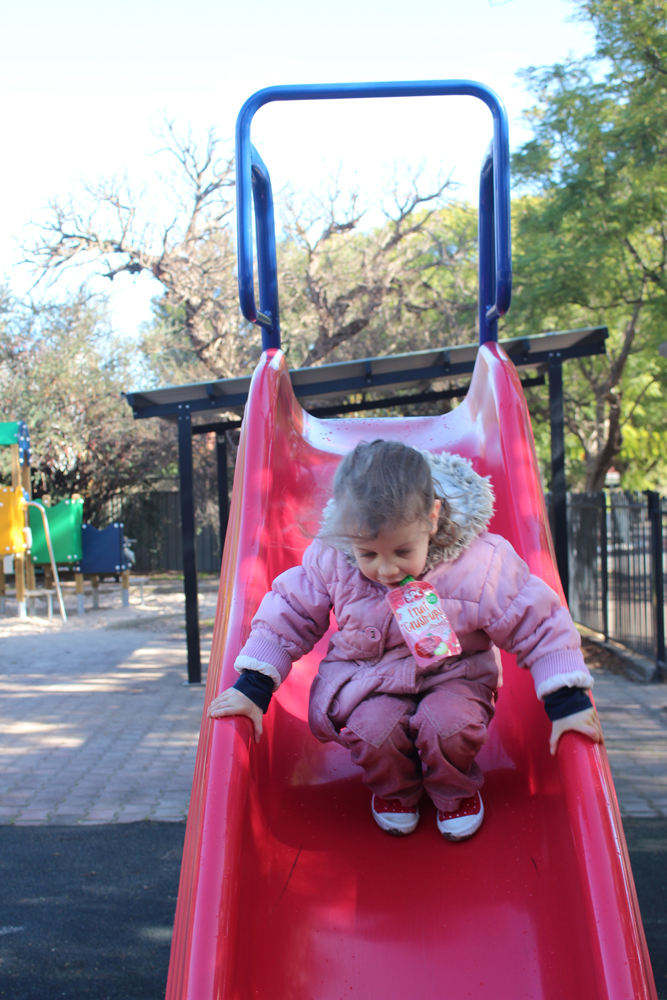 princess margaret playground, playgrounds, adelaide parks and playgrounds, fun things to do   - Princess Margaret Playground